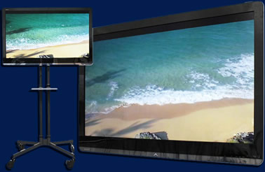 Plasma TV monitors mounted at eye level